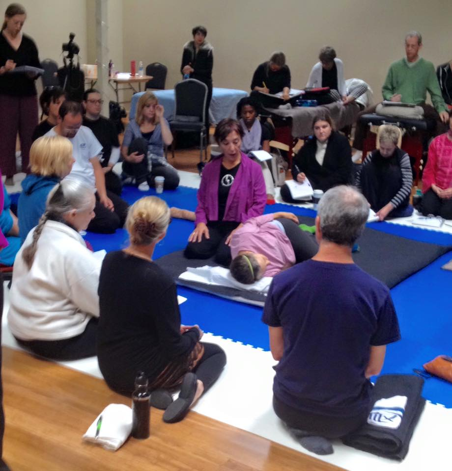 Inviato da Chicago Shiatsu Symposium 2015 Day 2 patrizia stefanini