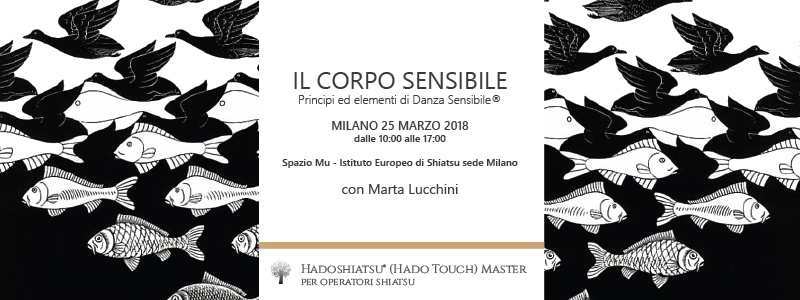 il corpo sensibile - workshop di Danza Sensibile
