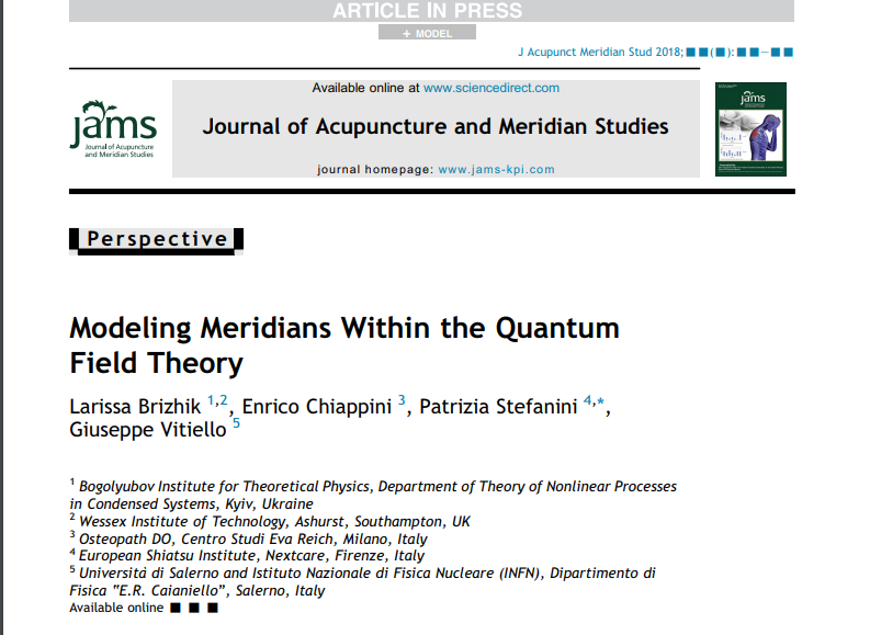 Modeling Meridians Within the Quantum Field Theory